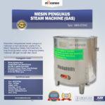 Jual Mesin Pengukus – Steam Machine (Gas) MKS-ST25G di Banjarmasin